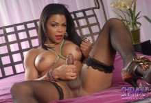 Sheeba Starr is a perfectly sexy black t-girl with a huge tranny cock